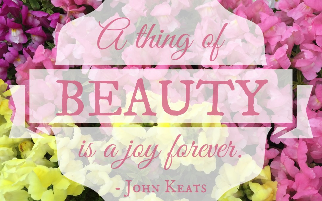Delight in God's Word with printable floral journal cards