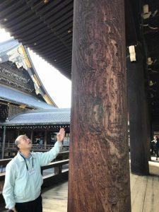 """御影堂広縁南東のケヤキの柱。老齢の大木ならではの味わいがある""""もく""""と呼ばれる独特の模様が浮き出ている"""