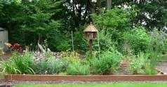 bcef0-gardenjulymorning2011