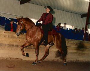 Rose Miller riding Praise Hallelujah Stallion