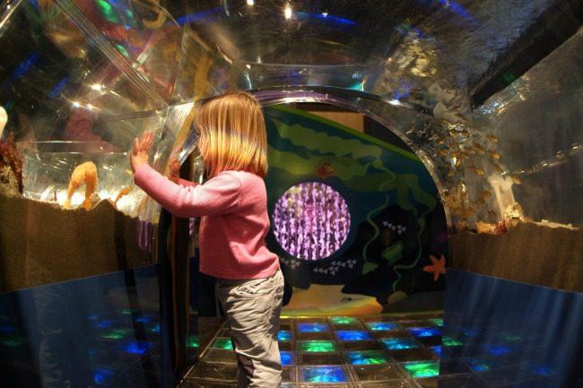 toddler aquarium