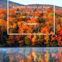 Wattage Thoughts. Autumn Equinox 2020.