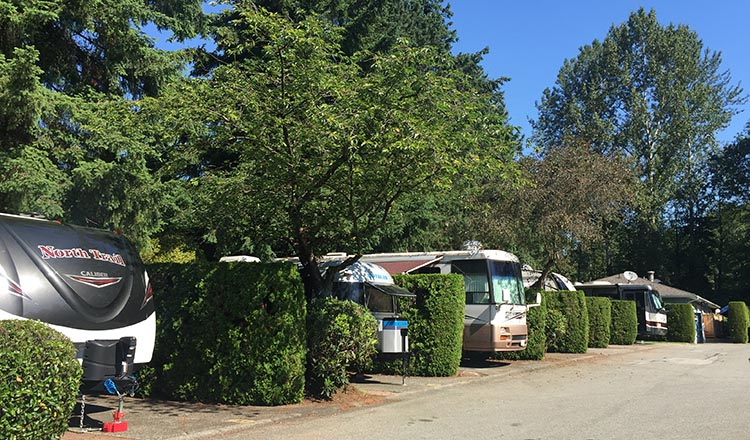 Review of the Burnaby Cariboo RV Park, Near Vancouver. A saving grace at the Burnaby Cariboo RV Park is the generous amount of hedges and trees