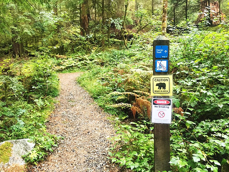 The signs at the beginning of the Energy Trail reminds you to be on the lookout for black bears (our dogs had bear bells on their collars). The trail is not suitable for bikes