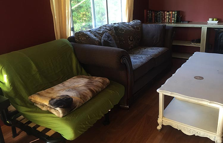 """To me, the cabin looked like it had been furnished with a hodge-podge of whatever mismatched furniture could be found on Craigslist's """"Free"""" listing!"""