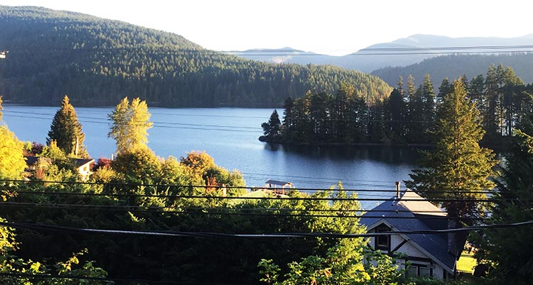The cabin had a lovely view of Lake Cowichan. We saw a cougar swimming across this lake!