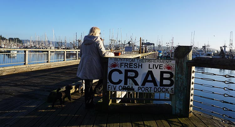 Review of Beverly Beach State Park, near Newport, Oregon. In season, you can buy live crab in the historical harbor area of Newport
