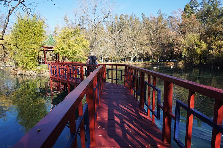 Winery Tours in Calistoga, Napa Valley, California. This garden is a legacy of the period of time when the winery was owned by an Asian couple