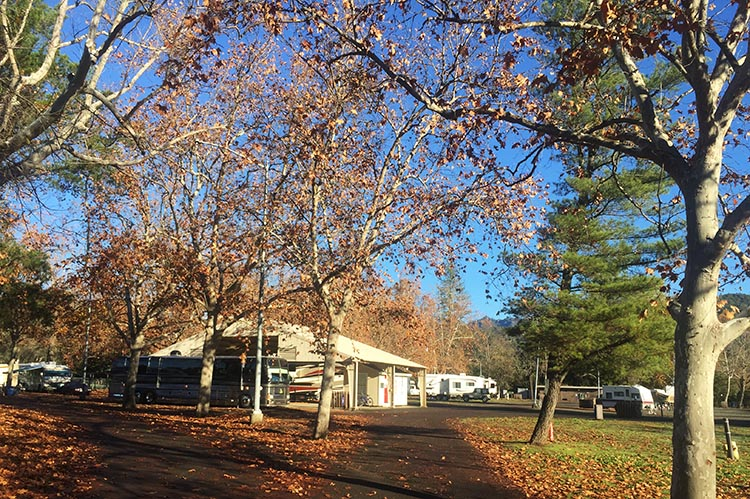 The registration office at Calistoga RV Park
