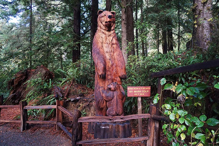 Along the Trail of Mysterious Trees you can enjoy many wooden carvings