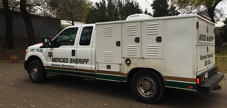 Review of Merced River RV Resort, Delhi, California. The Merced Sheriff came to the Merced River RV Resort to take statements after three dogs attacked Joe and our dogs in the park
