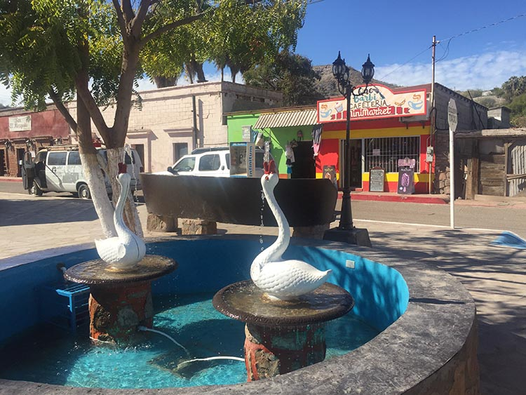 This is part of the zocola (town square) of Mulege