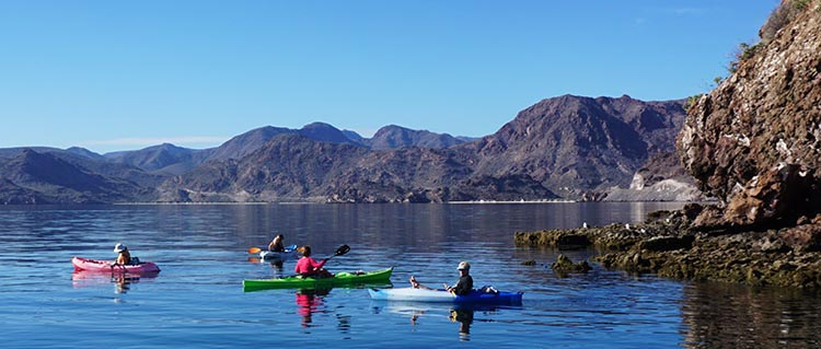 A friendly group of women kayaking in Bahia Concepcion, near Santispac Beach
