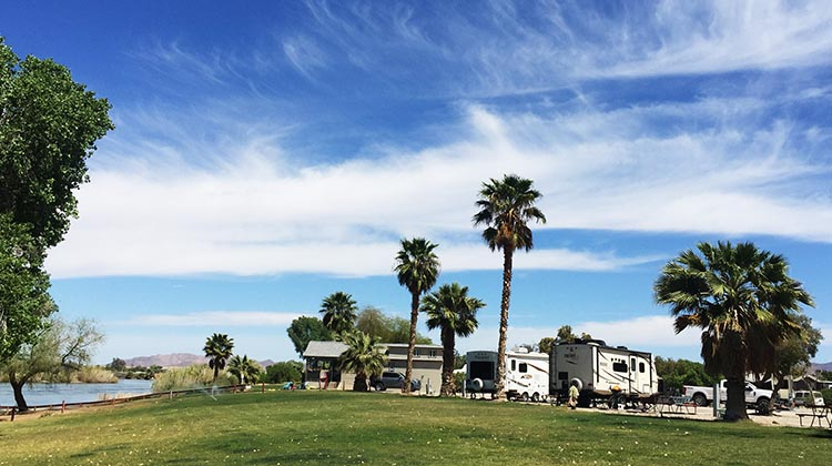 Review and Video of Arizona Oasis RV Resort