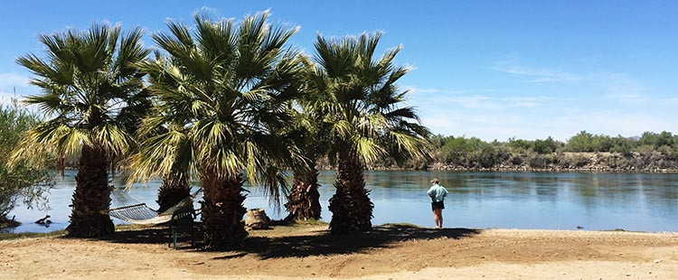Checking out the Colorado River on Day 1 of our stay at this park