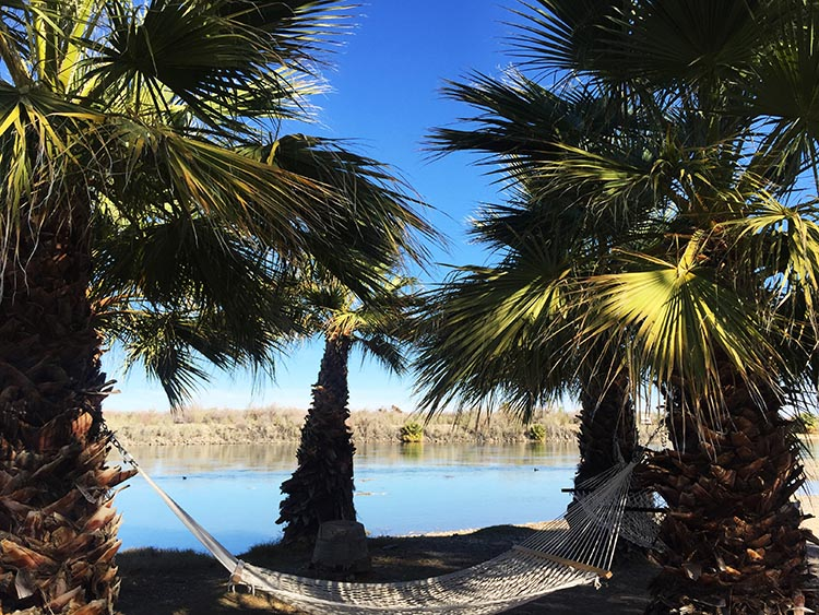 The hammocks on the beach are a great touch at the Arizona Oasis RV Resort