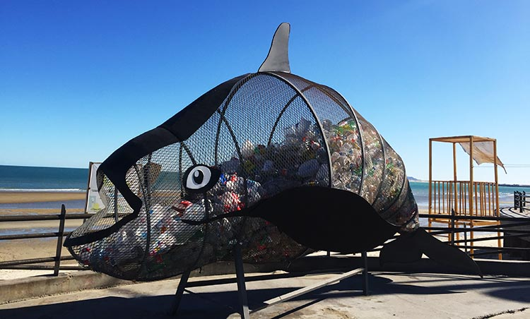 We thought this was a fun way to collect recycling on the malecon in San Felipe