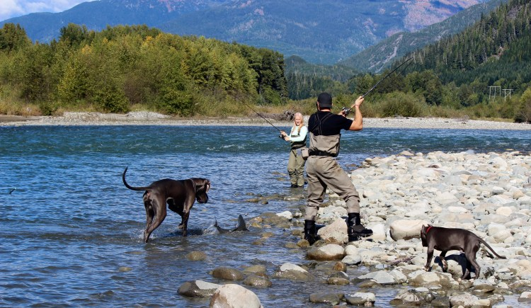Tim caught the first Coho of the day. Diesel the Great Dane loves fishing as well.