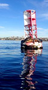 Sailing off SoCal.