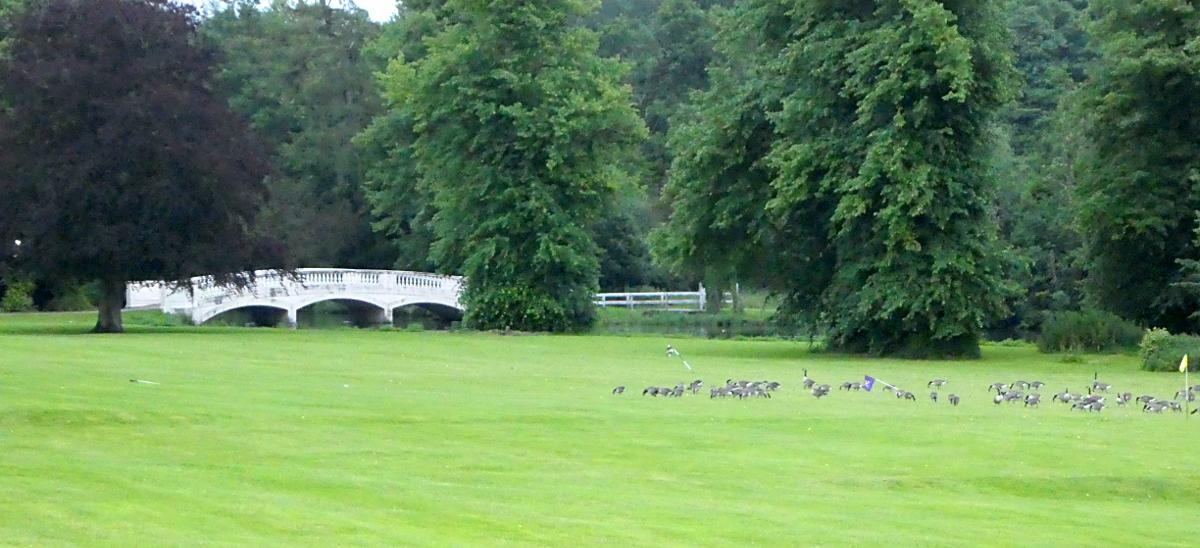 Trip - Donnington Grove