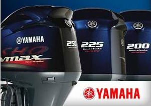V6 VMAX SHO CHECK IT OUT
