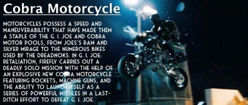 day-10-cobra-motorcyle