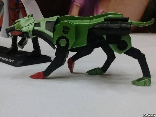 06-gijoecon-2016-blackcat
