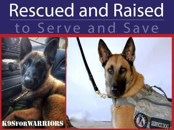 K9s for Warriors