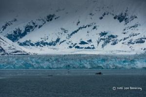 Glacier in Hubbard Bay