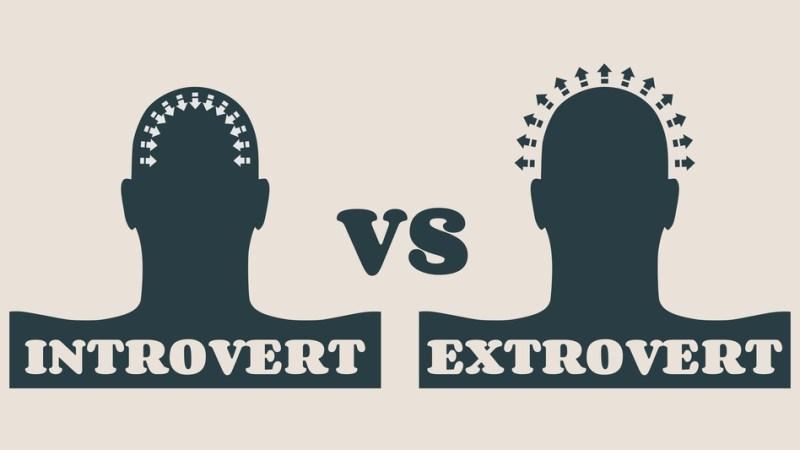 Introversion vs. Extroversion