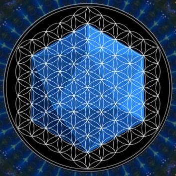 cropped-FLowr-of-Life-Icosahedron.jpg