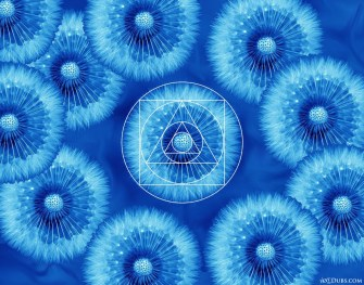 Flower Geometry Magic 1