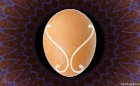 Schauberger Leedskalnin Egg
