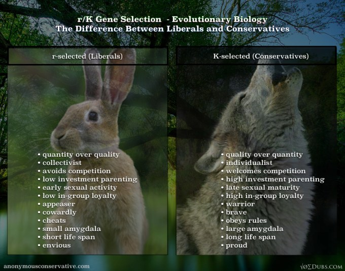 rk-gene-selection-evolutionary-biology