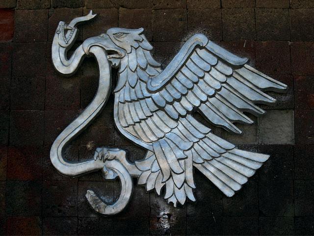 lrap_0709_08_z-_-photo_eagle_eating_snake