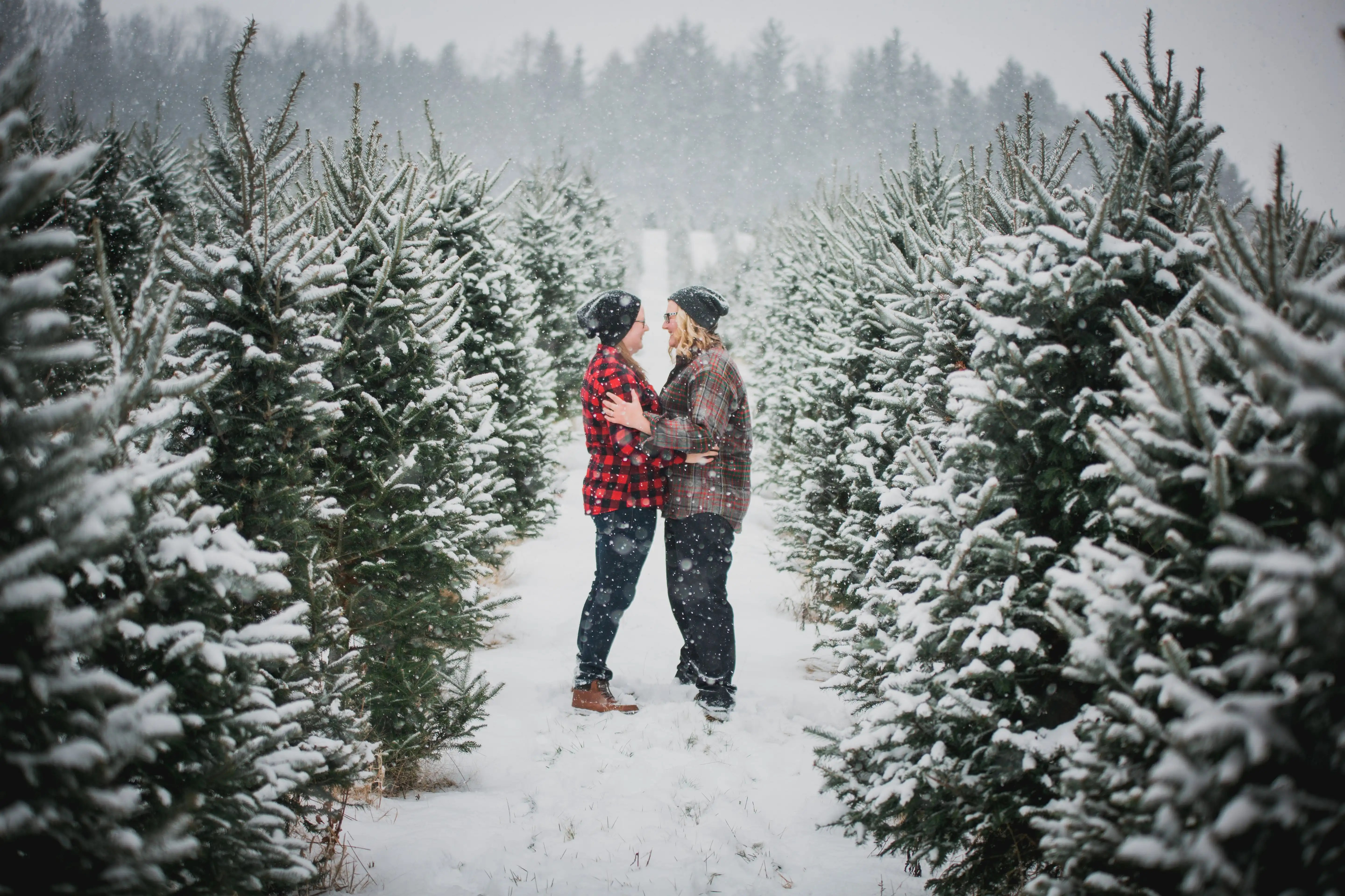 couple in a tree farm