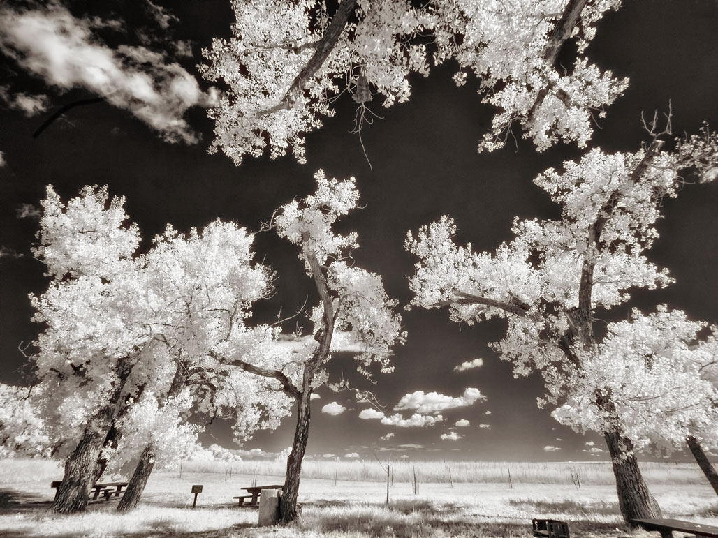 Thinking About Infrared Conversion?