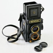 Film Friday: Gold-trimmed Seagull TLR