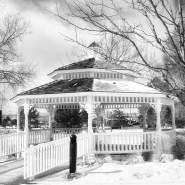 Snowfall in O'Brien Park