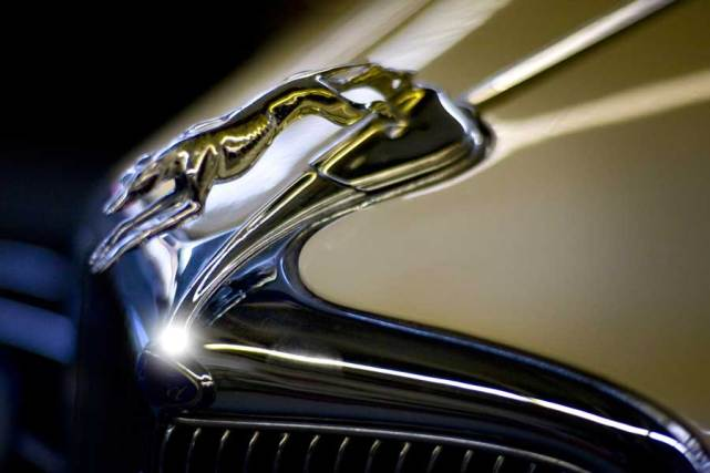 Close-up of Hood Ornament