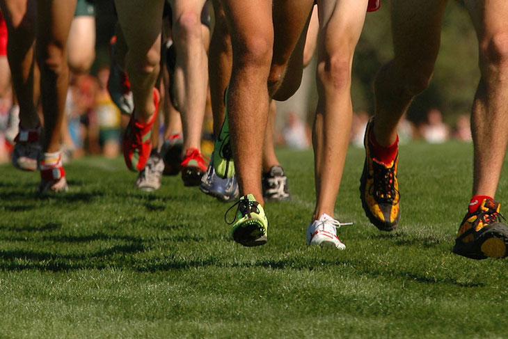 St. Joseph County runners close out season at state finals