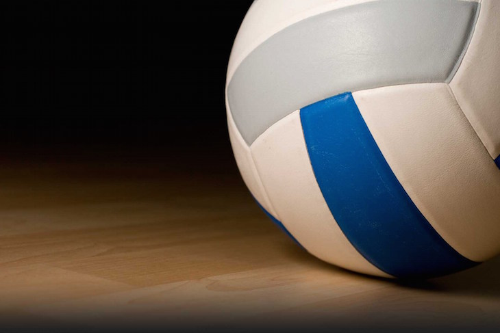 District semifinal roundup: Mendon, Constantine and Colon volleyball teams advance to finals