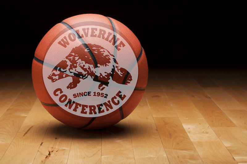 All-Wolverine Conference Boys Basketball Teams Announced