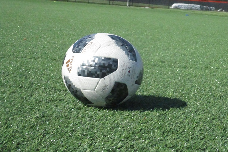 PREVIEW: Gull Lake hosts Loy Norrix in SMAC soccer