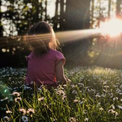 girl sitting on daisy flowerbed in forest girl sitting on daisy flowerbed in forest