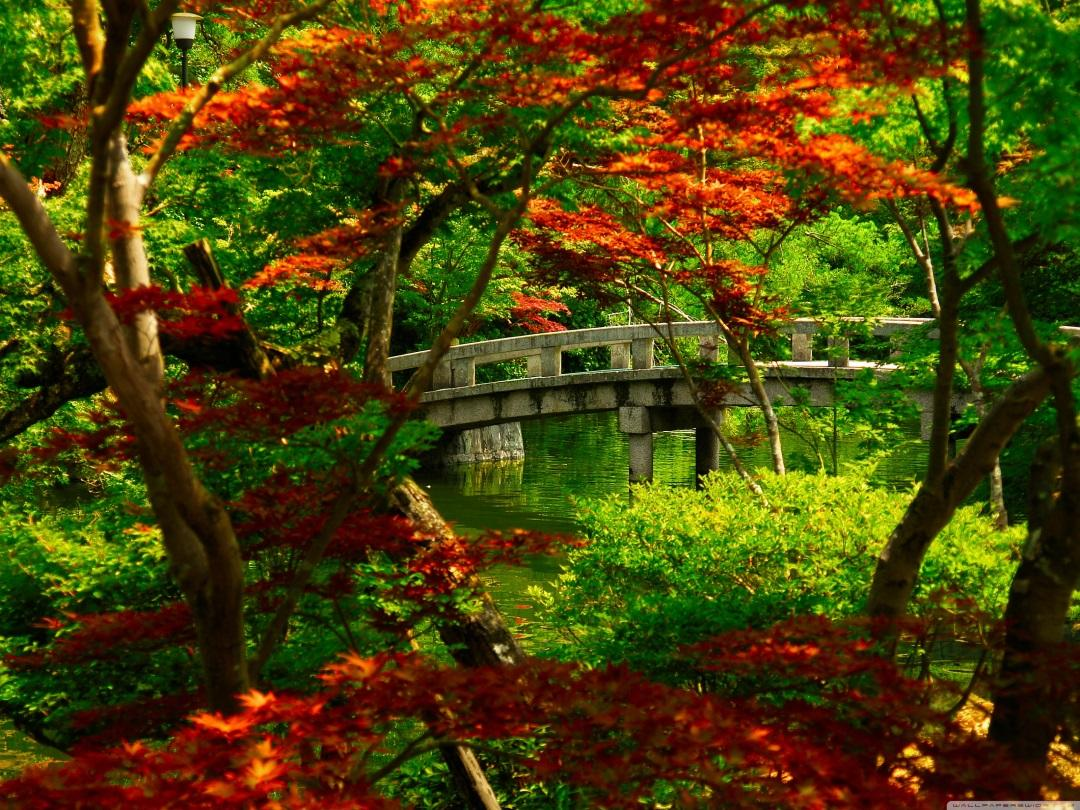 japanese_garden_kyoto-wallpaper-3200x2400