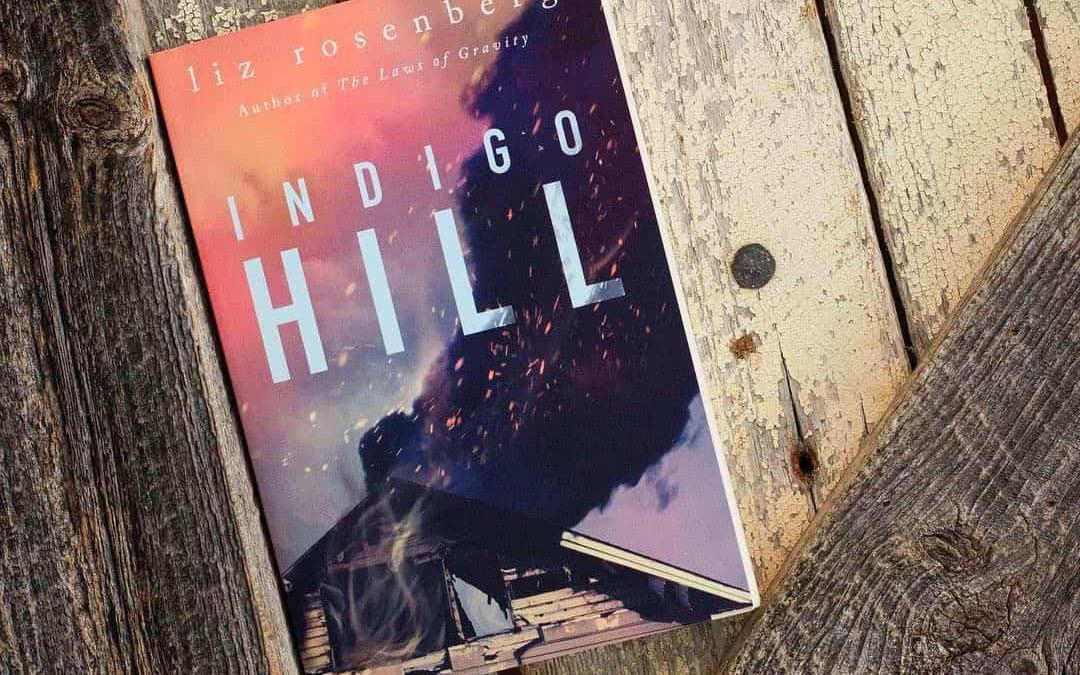 Indigo Hill: A Novel by Liz Rosenberg