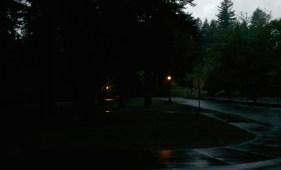 Evening in park.