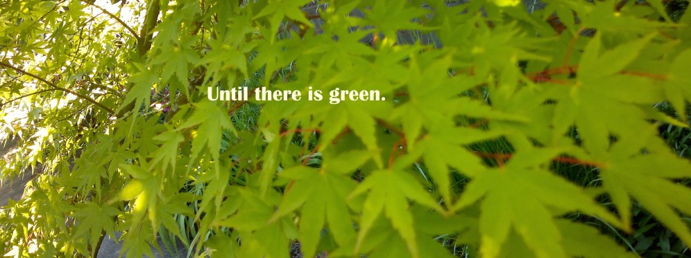 Until there is green.