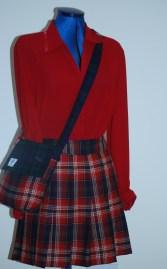 tartan skirt after